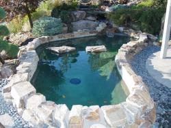 Main photo gallery for Koi pool liners